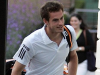 Andy Murray focussing on World Tour Finals
