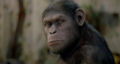 Scott Z. Burns says his Dawn of the Planet of the Apes script was influenced by Full Metal Jacket