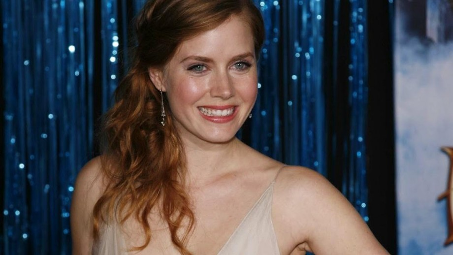 What did you think of the movie Leap year with Amy Adams?