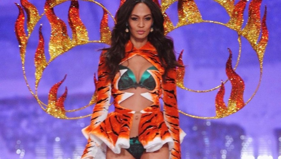 Joan Smalls, Naya Rivera, Roselyn Sanchez: Puerto Rican women taking the World by storm