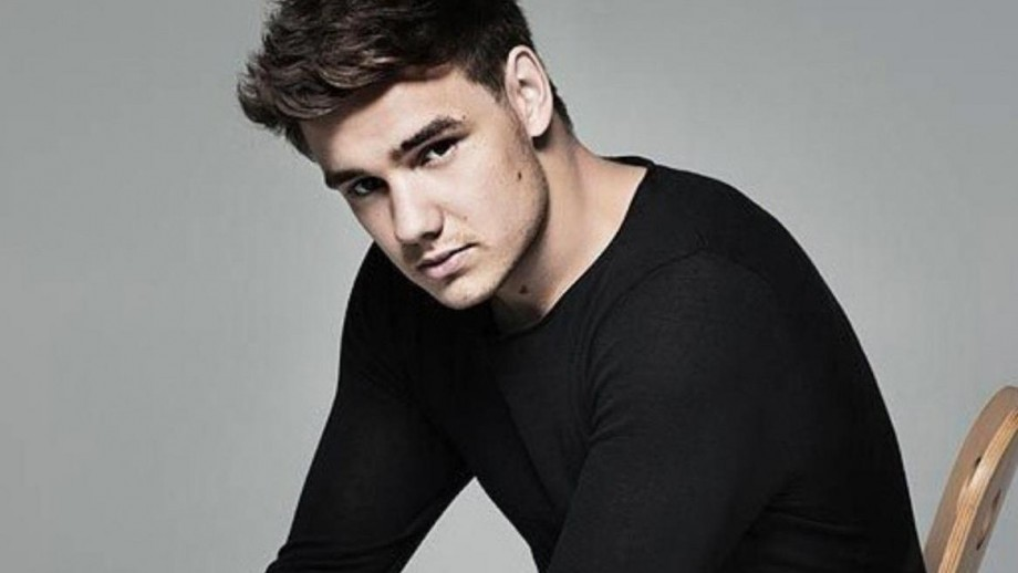 One Direction's Liam Payne to write songs for Neon Jungle
