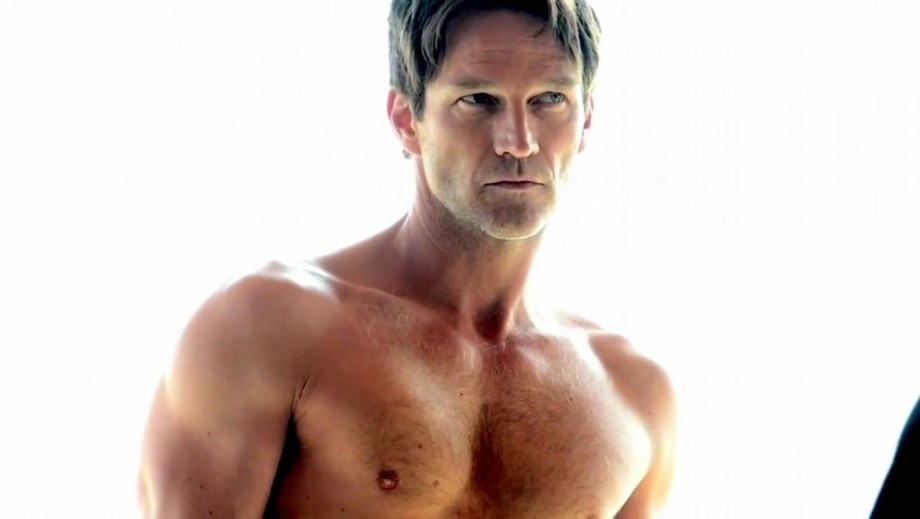 Stephen Moyer reveals not 'bittersweet' about 'True Blood' ending
