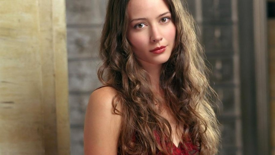 Recommend you amy acker sexy body pictures apologise, but
