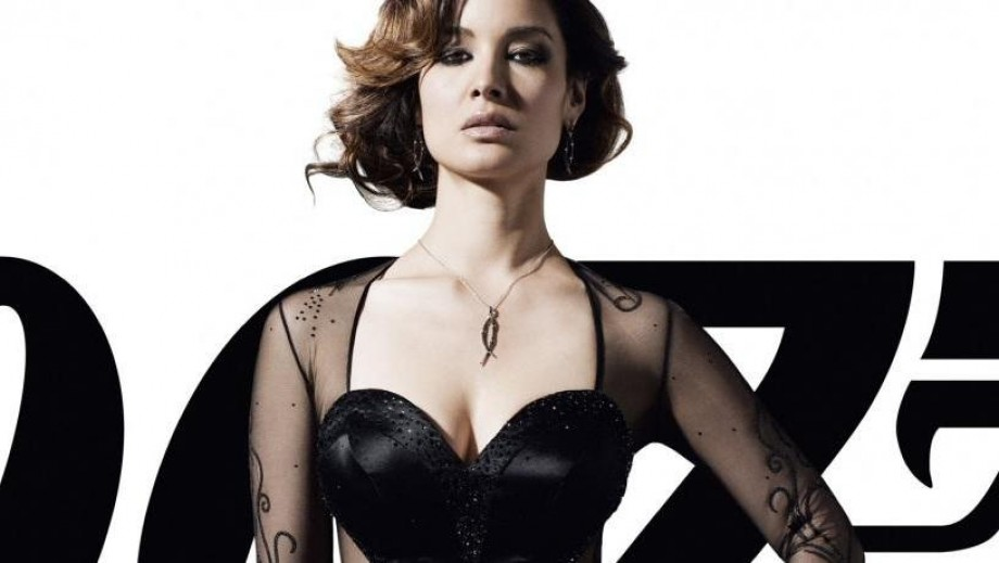 Can Berenice Marlohe become a Hollywood star with her 2014 roles?